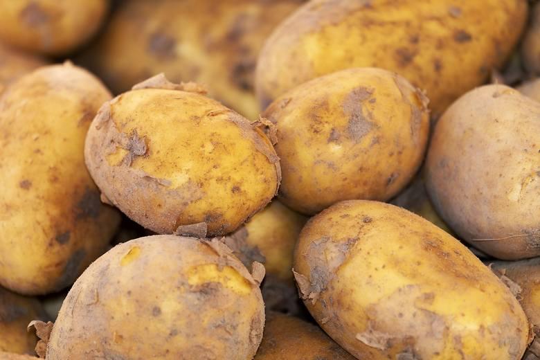 Na rynku hurtowym zaobserwowano w ostatnich dniach wzrost cen na ziemniaki krajowe - odmiana Irga z 2 do 2,33 zł/kg. Rok temu o tej porze kosztowały