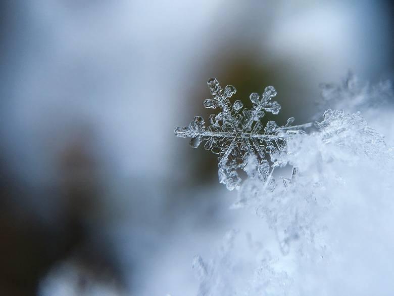Zdaniem synoptyków w najbliższych tygodniach możemy spodziewać się radykalnej zmiany pogody. W połowie stycznia do Polski ma dotrzeć wyż syberyjski nazywany