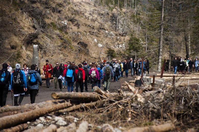 Tłumy turystów w Dolinie Chochołowskiej