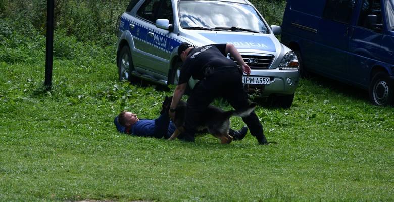 Po chwili mężczyzna był już w rękach mundurowych. Następnie strażaccy nurkowie przeszukali dno jeziora gdzie ujawnili nóż, który był narzędziem zbro