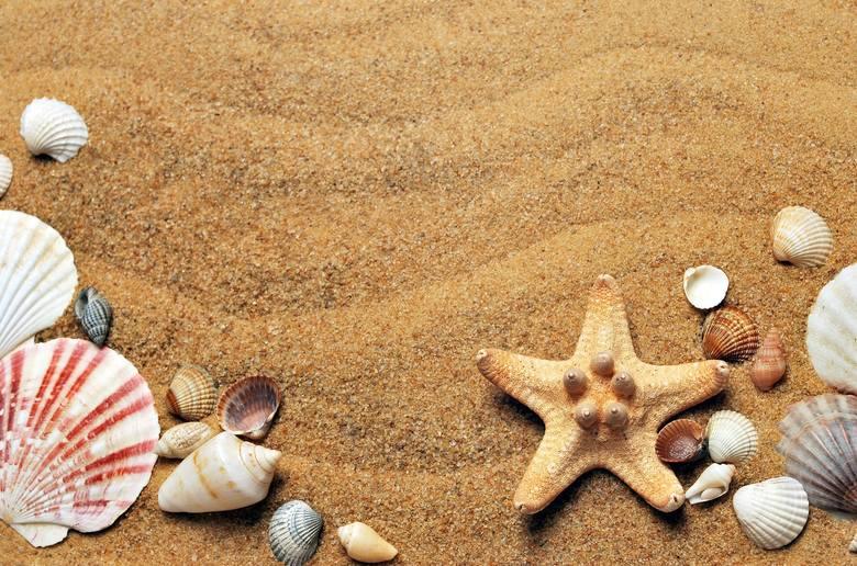 Jak uniknąć dodatkowych kosztów na urlopie? Sprawdź i kliknij na kolejne slajdy