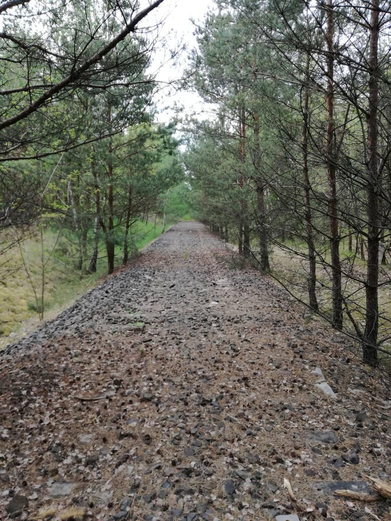 Elementy starych linii kolejowych w okolicy Pleśna zaczęły znikać. To sprawka złodziei?