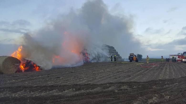 Z pożarem stogu w Komorowie 27 sierpnia 46 strażaków walczyło przez ponad 6 godzin. Gdyby nie czujność druhów z Nowych Świerczyn, prawdopodobnie musieliby