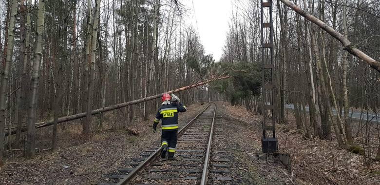 Powalone drzewa na torowiskach spowodowały wstrzymanie ruchu pociągów.