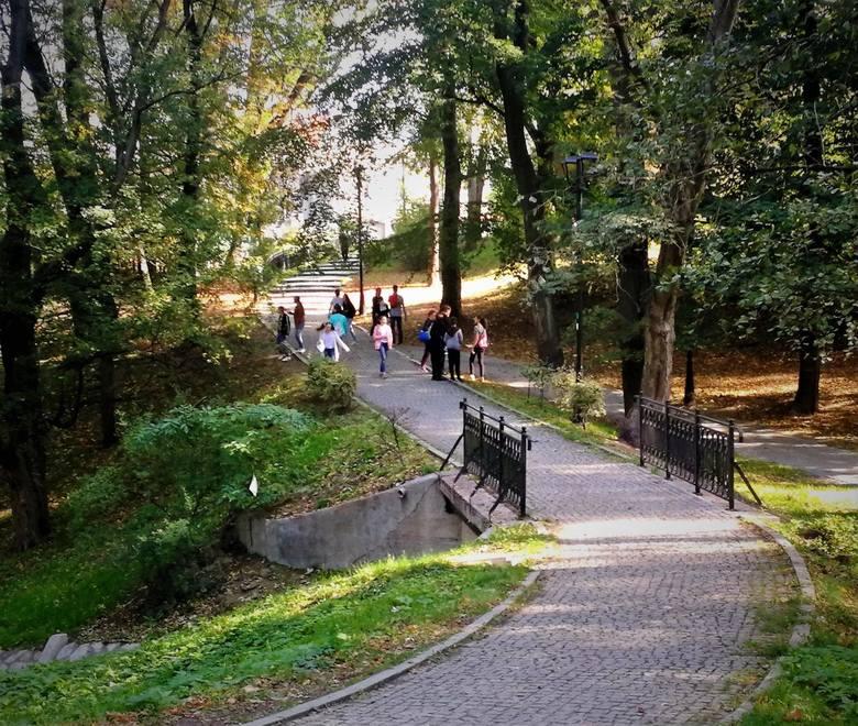 Park Chrobrego Wyjątek: alejka asfaltowa łącząca ul. Wrocławską z ul. Lechicką, alejka łącząca ul. Chrobrego przy PP nr 4 z ul. Planty, alejka asfaltowa