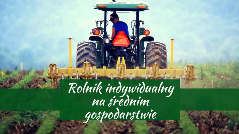 Niezbyt poważanym zawodem w 1999 roku był rolnik indywidualny. Jedynie 36% ankietowanych uznało, że darzą rolników dużym poważaniem.