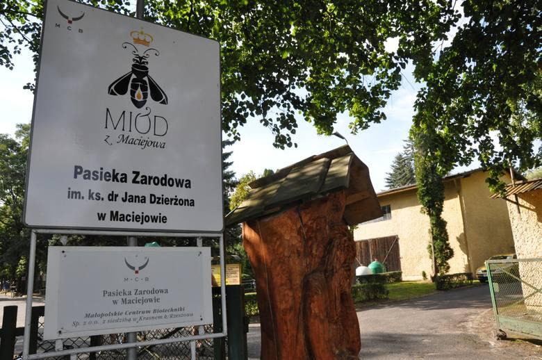 Pasieka zarodowa w Maciejowie