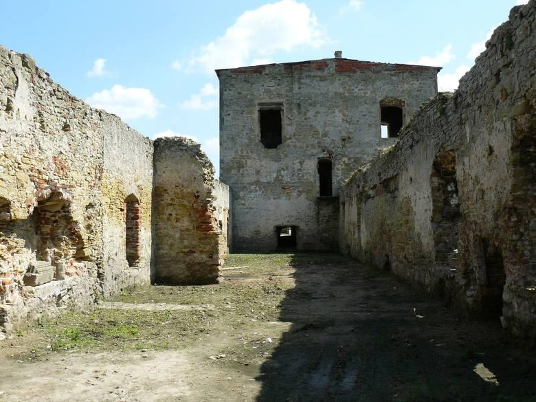 W sobotę, 15 maja szykują wielkie sprzątanie zamku w Ćmielowie [ZDJĘCIA]
