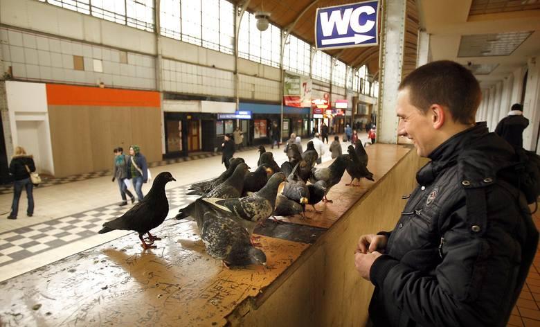 Dziesięć lat temu trwał remont dworca Wrocław Główny. Dziś jest piękną wizytówką Wrocławia. A pamiętacie jeszcze jak wyglądał przed remontem? Zobaczcie