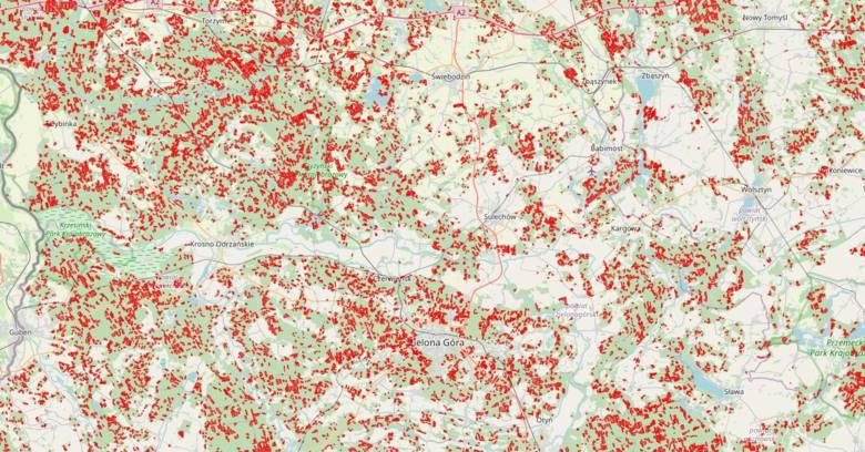 Zanim wytną Twój las - powstała mapa przygotowana przez twórców inicjatywy Lasy i Obywatele.