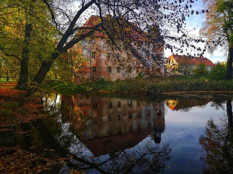 Kolorowe liście i jesienne słońce sprzyjają wizerunkowi zamku w Broniszowie. Zobaczcie jak wygląda jesień w tym miejscu na zdjęciach Łukasza Wojtasika