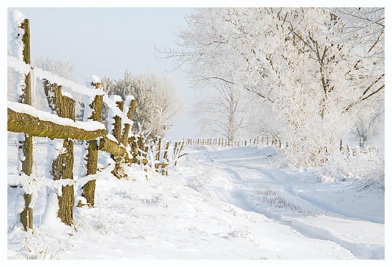 Zima w Siekierkach