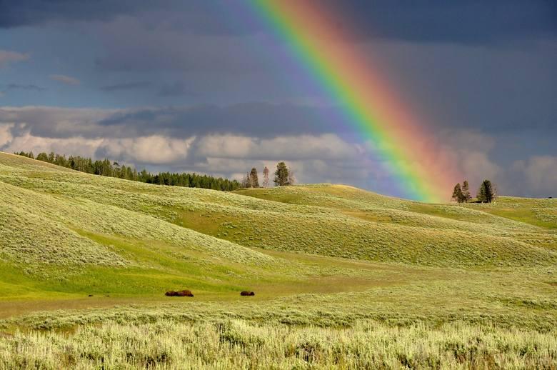 Jak wiadomo tęcza nie jest możliwa, gdy powietrze jest suche. Najczęściej występuje więc po deszczu. Dlaczego pora jej występowania ma znaczenie?Podobnie