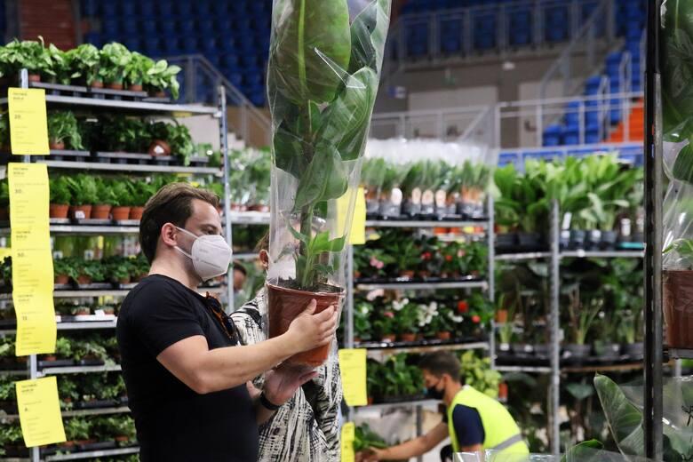 Festiwal Roślin w lubelskiej hali Globus. Miłośnicy zieleni mają w czym wybierać! Zobacz zdjęcia