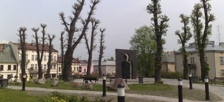 Mieszkańcy Rzeszowa są zbulwersowani sposobem przycinki drzew