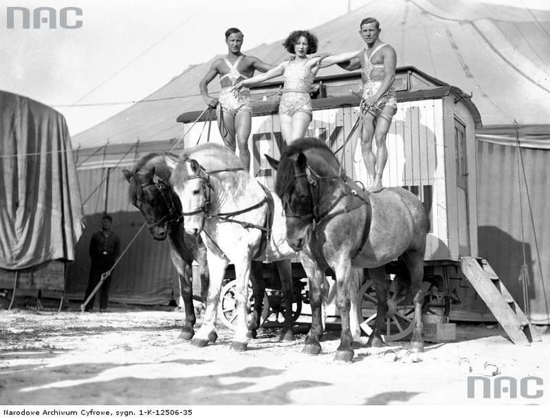 """Grupa woltyżerów w strojach cyrkowych na koniach. Zdjęcie z maja 1934 roku.  <font color=""""blue""""><a href="""" http://www.audiovis.nac.gov.pl/obraz/156450/82de7d630c0d749d93e7c4ca94b135c7/""""><b>Zobacz zdjęcie w zbiorach NAC</b></a> </font>"""