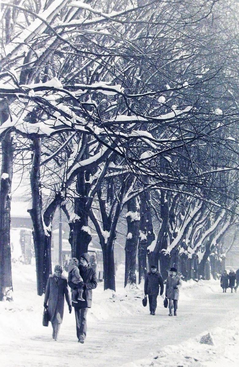 Ul. Jagiełły w zimowej scenerii na początku 1979 r.