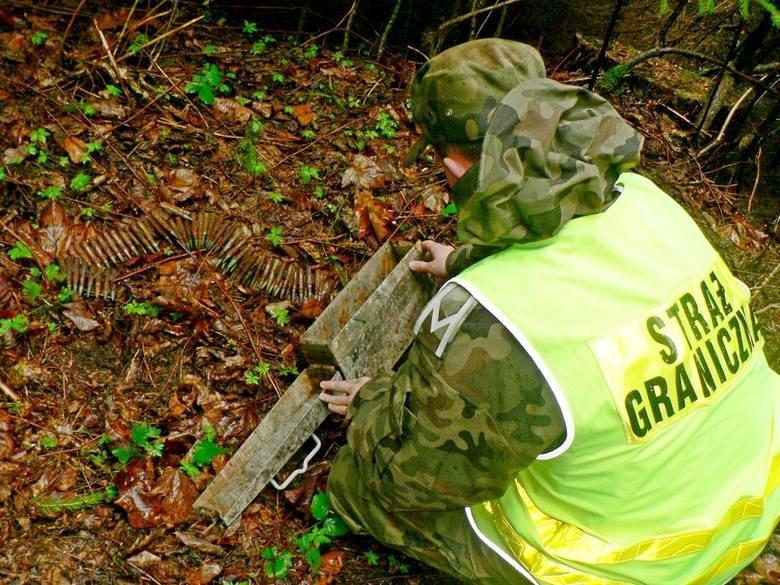 Funkcjonariusze straży granicznej z Wetliny w Bieszczadach, zabezpieczali miejsce znalezienia 200 sztuk amunicji Mauser pochodzącej z czasów II wojny