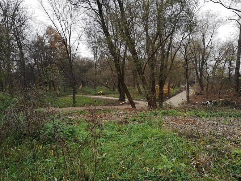 Naukowcy z PAN apelują do władz Krakowa, aby zadbać o tereny zielone w mieście i nie doprowadzać do ich uszczuplania
