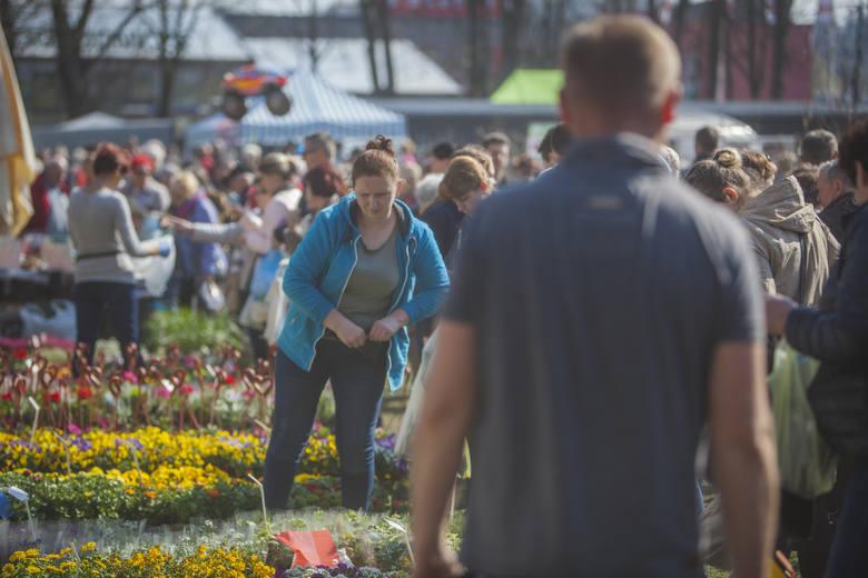 Od soboty do niedzieli (06.-07.04) w Słupsku trwa kolejne edycja targów ogrodniczych. Ciepła i słoneczna sobota sprawiła, że impreza cieszy się ogromnym