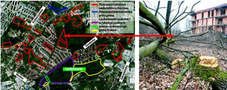 Zieleń w Borku Fałęckim znika. Zamiast drzew - bloki