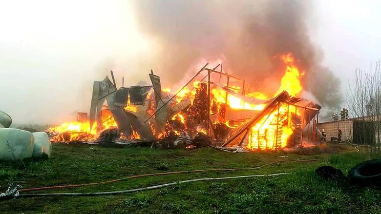 PSP Augustów zostało zadysponowane w niedzielę o godzinie 5. do miejscowości Jaziewo. Zdjęcia udostępnione dzięki uprzejmości: OSP Sztabin
