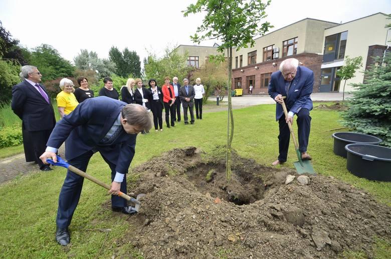 W czerwcu 2014 roku, podczas uroczystości otwarcia nowego gmachu hospicjum Palium, prof. Jacek Łuczak zasadził jedno z drzew w parku <br />