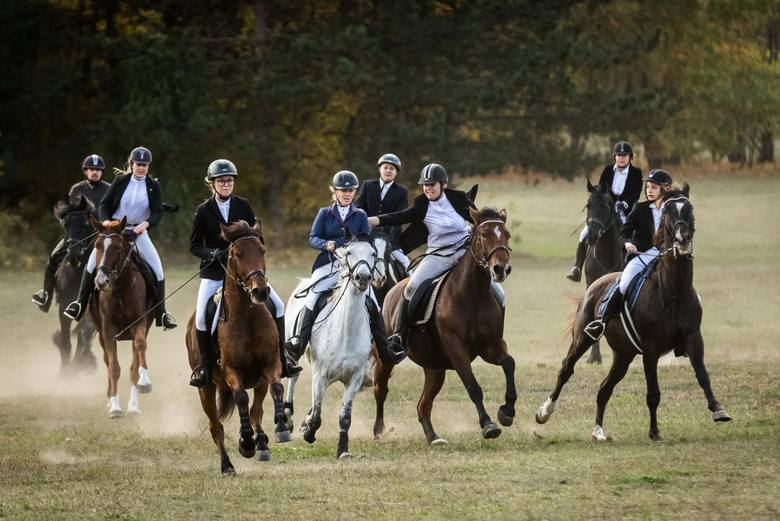 """Wczoraj (20 października) w Myślęcinku jeźdźcy jeźdźcy na koniach wyruszyli w tradycyjną pogoń za """"lisem"""". Hubertus to widowiskowy wyścig, w którym jeden"""