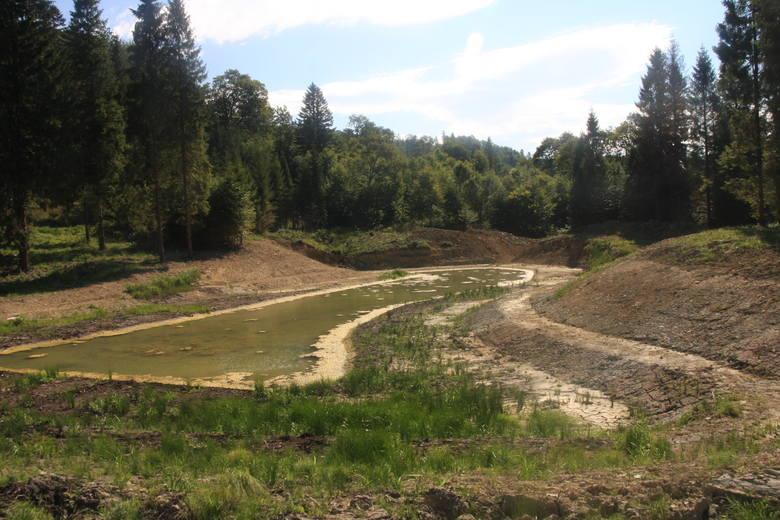 Zbiornik w nadleśnictwie Stuposiany