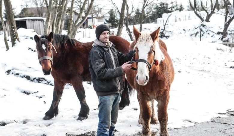 Waldemar Grzesik:  Kiedy rano wypuszczam konie, czasem widzę wilka, jak siedzi i patrzy. Pewnie jakiś zwiadowca watahy.