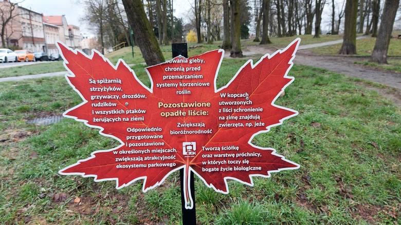 Ktoś zniszczył tablicę ustawioną w Parku Tysiąclecia, a informująca o korzyściach pozostawienia liści w tym miejscu.