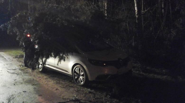 Uszkodzone dachy, drzewa przewracające się na samochody i blokujące drogę, przewalone słupy energetyczne... W piątek, 13 kwietnia nad regionem przechodzi