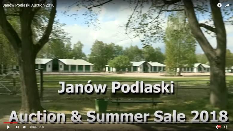 Janów Podlaski Auction 2018 spot promujący reklama