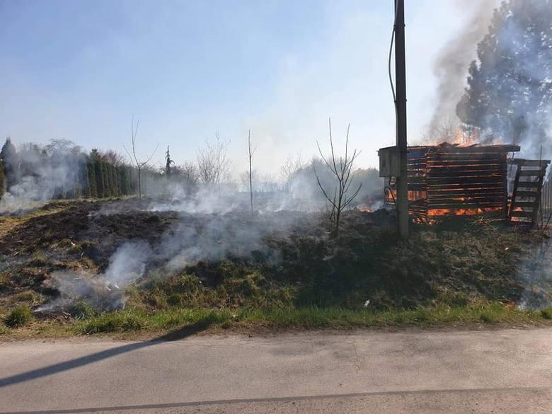 Pożar traw w Przybysławicach. Było groźnie, spłonęła drewniana szopa i uszkodzony został słup energetyczny