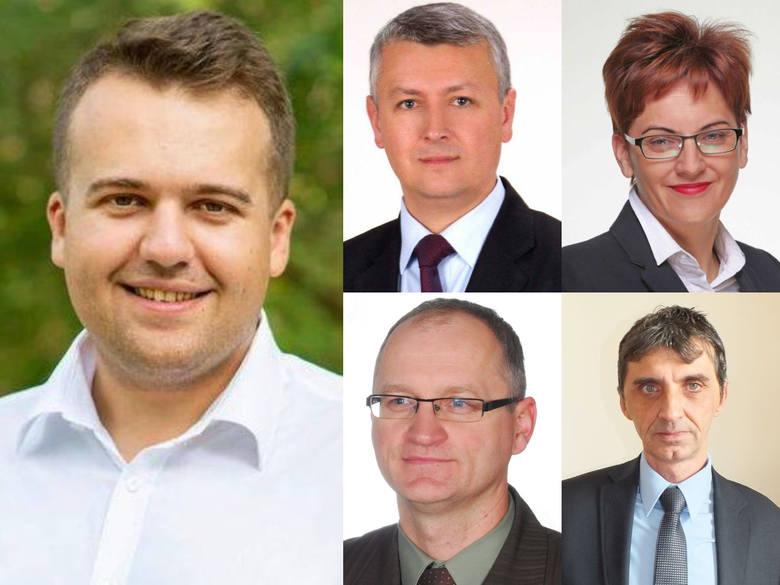 Jak wyglądałby film lub serial animowany z prezydentem Starachowic, burmistrzem Wąchocka i wójtami z naszego powiatu w roli głównej? Mamy propozycję!