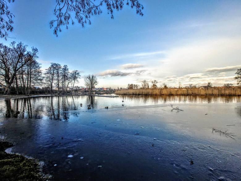 Jeziora Trzciela, czyli poznaj tajemnice Wyspy Kormoranów