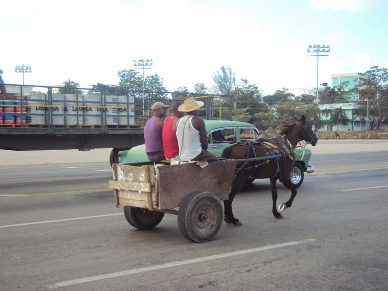 """Własny wóz i własny koń to wielkie szczęście. Wtedy Kubańczyk nie musi czekać na autobus czy pomoc """"żółtego urzędnika"""". Jedzie gdzie"""