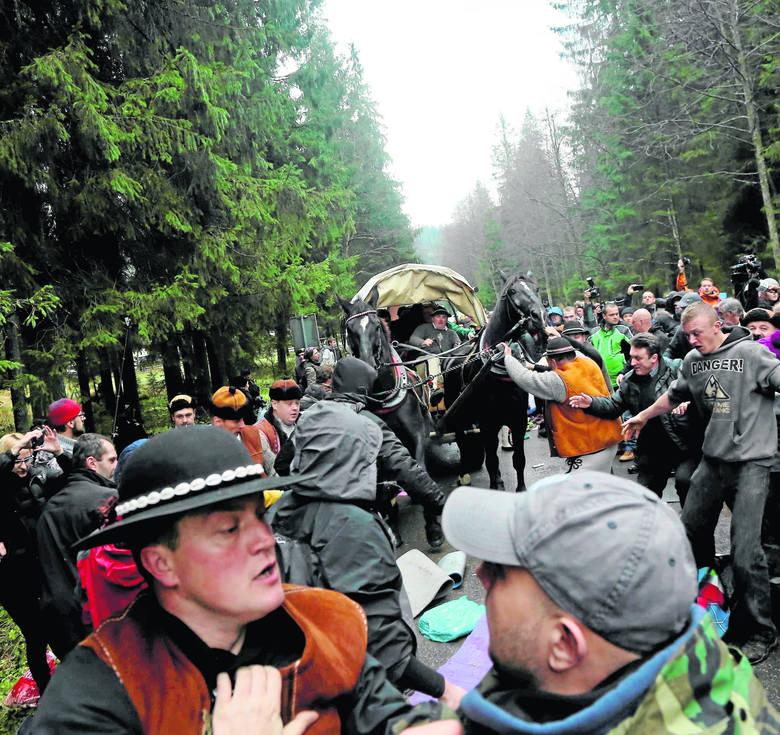 W listopadzie głośnym echem w Polsce odbiła się regularna bijatyka, jaką urządzili sobie na szlaku do Morskiego Oka obrońcy zwierząt i fiakrzy przewożący