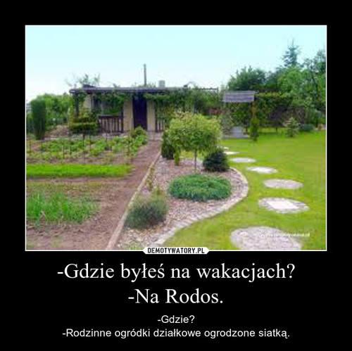 MEMY o RODOS: Wakacje i urlop spędzasz na RODOS? Nic straconego! MEMY o działkowcach i ogródkach działkowych sprawią, że zamarzysz o grillu!