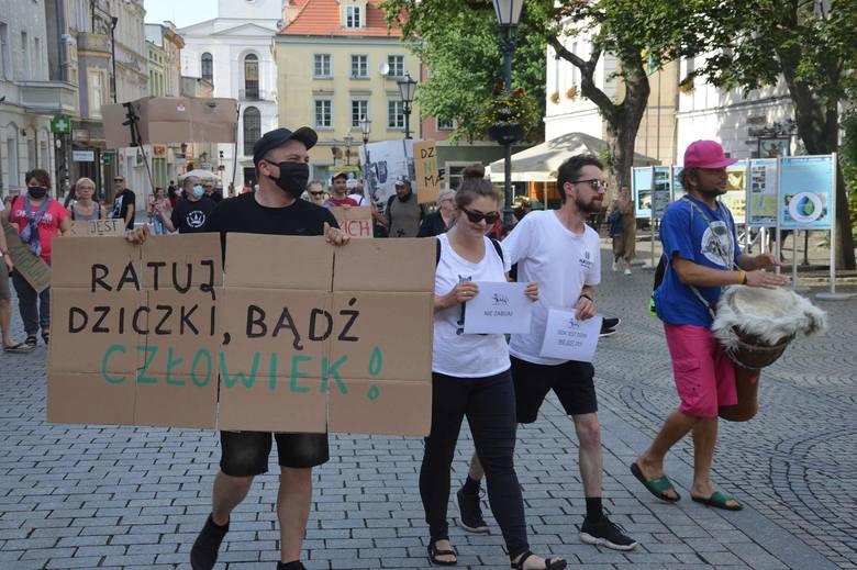 Protest w obronie dzików w Zielonej Górze