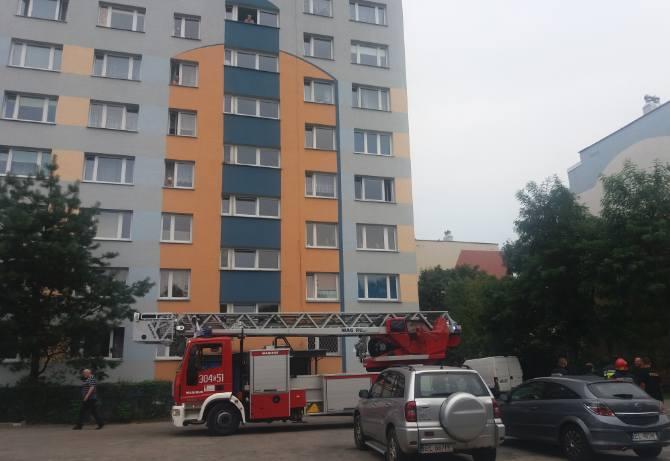 Strażacy zaopatrzyli się w drabinę, ale ostatecznie nie była potrzebna.