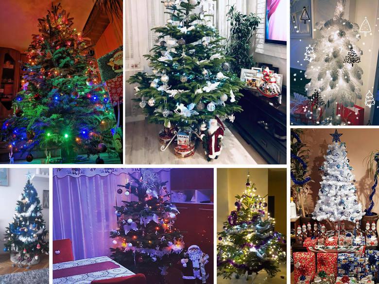 """Jak wyglądają choinki w naszych domach - zdjęcia od czytelników """"Dziennika Bałtyckiego"""""""