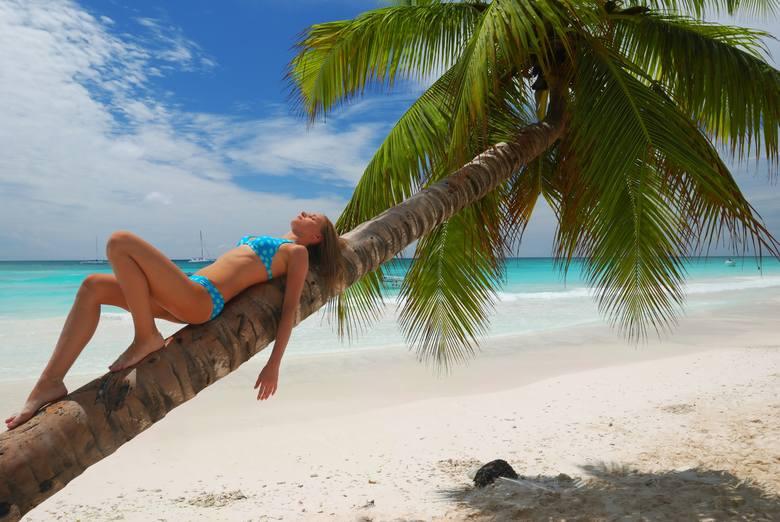 Gwiazdkę można spędzić np.  na najsłynniejszych plażach świata, na wycieczkach objazdowych czy w europejskich stolicach. Wybór jest ogromny, a ceny zróżnicowane