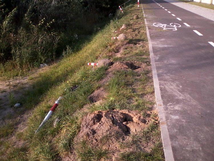 Słupki wzdłuż ścieżki rowerowej przy Trawiastej znów zostały zdewastowane