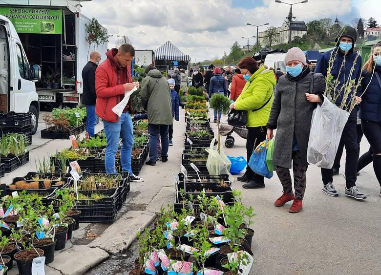 Ogromny ruch panował w sobotę, 8 maja na giełdzie przy ulicy Przemysłowej w Sandomierzu. Wiosenna aura przyniosła ożywienie w  handlu. Wzięciem cieszyły