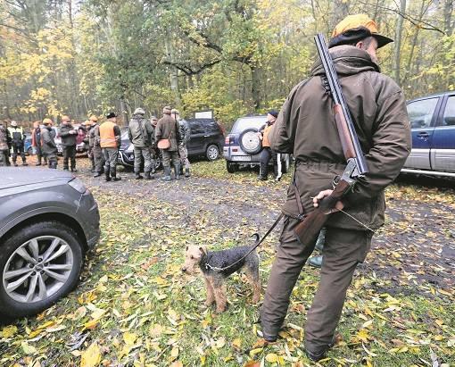 W okolicy Oświęcimia myśliwi idący ze strzelbami i psami, to częsty widok, szczególnie w weekendy. Mieszkańcy zaczynają się ich bać, bo polują zbyt blisko