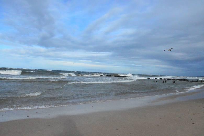 Nad nasz region nadciągnął orkan Sabina. Bardzo mocno wieje od godzin popołudniowych w niedzielę. Wieczorem oraz w nocy strażacy w naszym regionie mieli