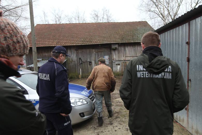 Fałszywi weterynarze wykorzystują fakt, że od co najmniej pół roku inspektorzy weterynaryjni kontrolują gospodarstwa na terenie województwa w związku
