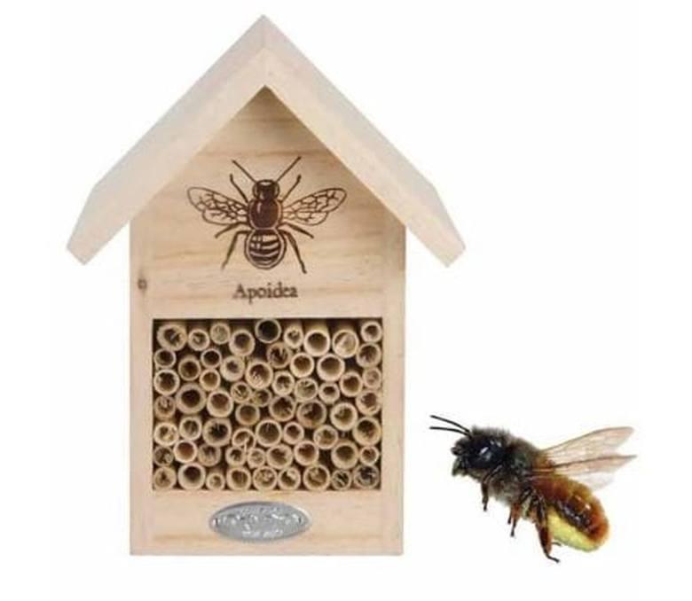 W sprzedaży dostępnych jest wiele rodzajów domków dla pszczół.