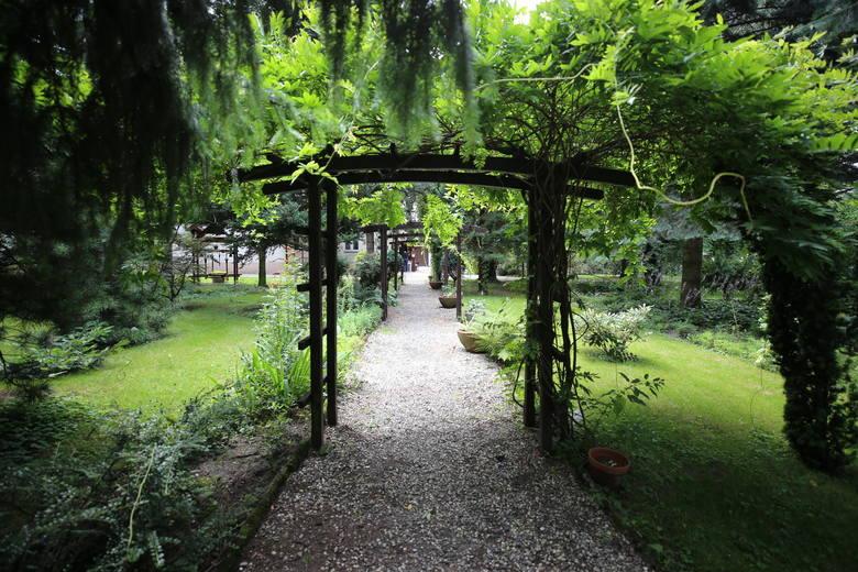 Parafialny Ogród Botaniczny w Bujakowie to miejsce pełne roślin, rzeźb czy kapliczek. Zobacz kolejne zdjęcia. Przesuwaj zdjęcia w prawo - naciśnij strzałkę